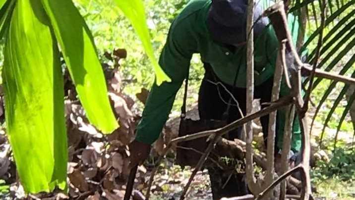 BLOG: Over een tuinman in Thailand en 'Geven maakt Rijk'.