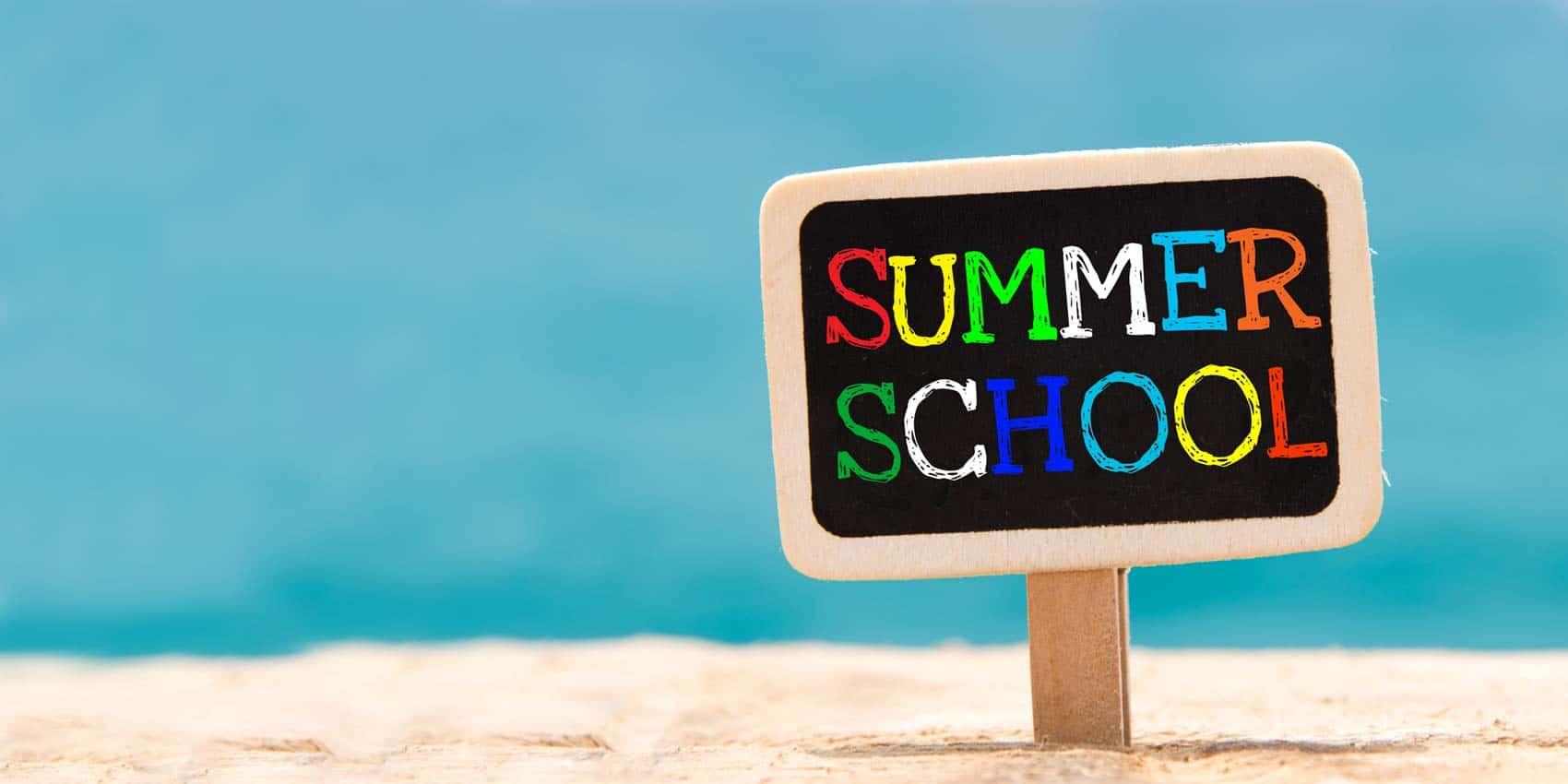 Training Summer School